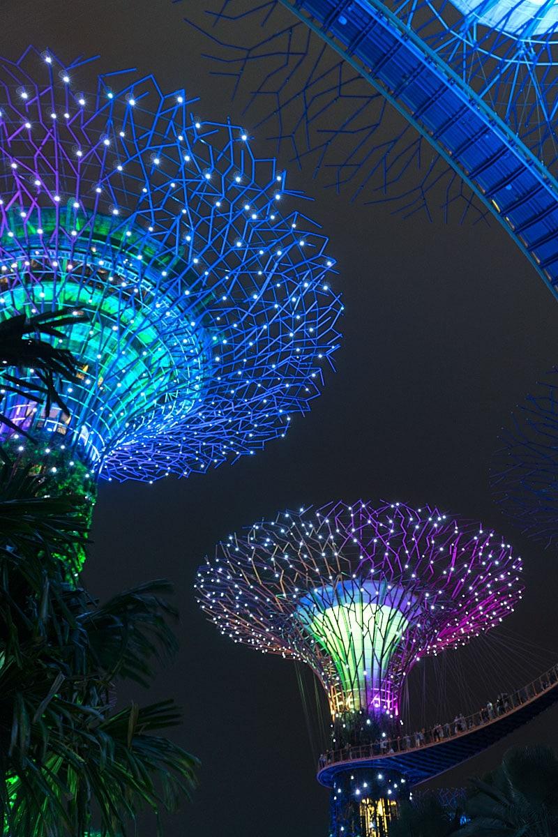 singapore night show