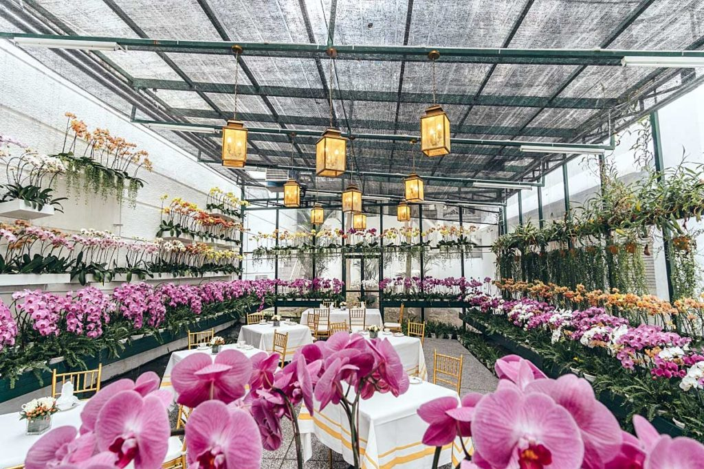 Majestic high tea: Orchid Conservatory