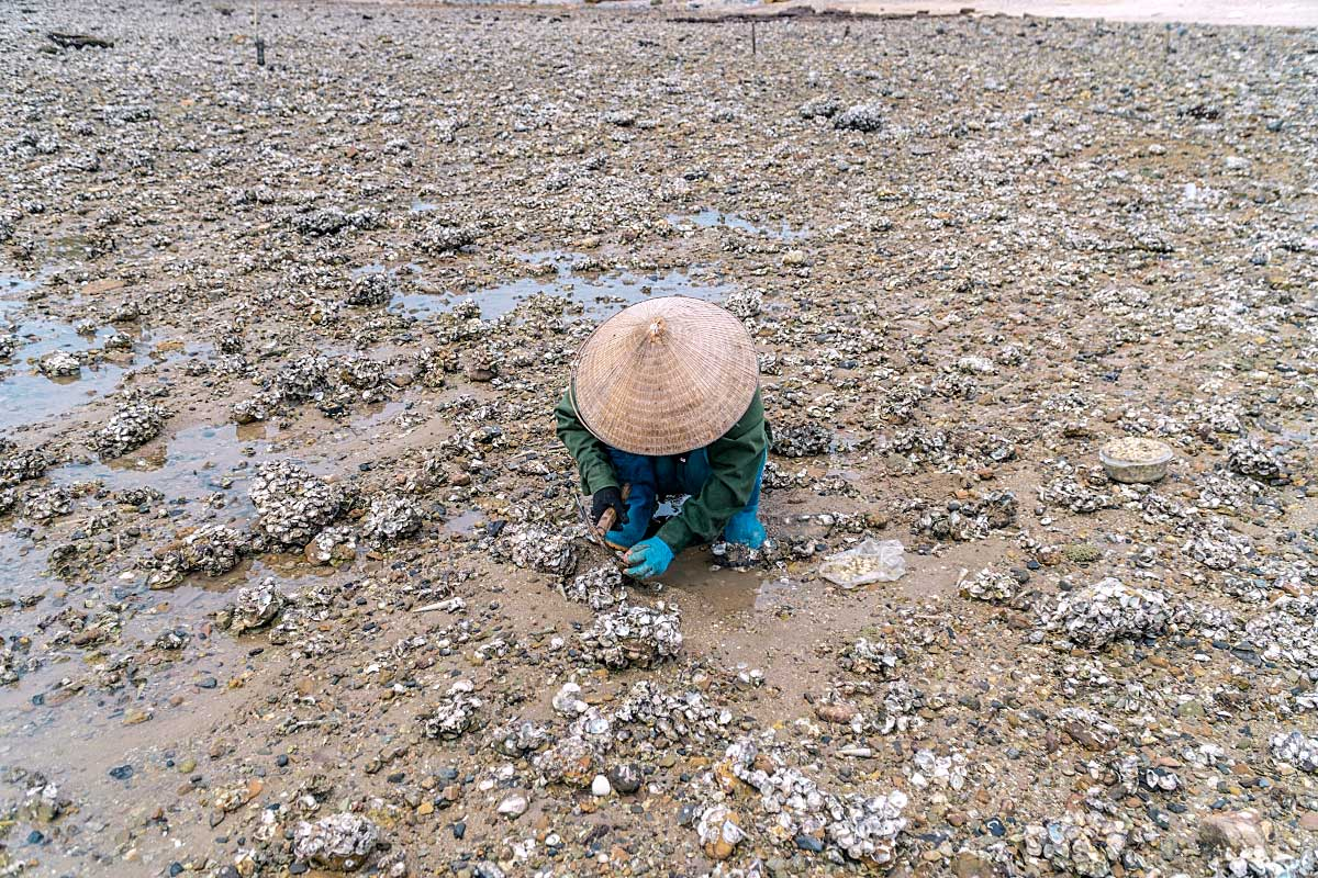 Woman wearing Vietnamese hat on the beach