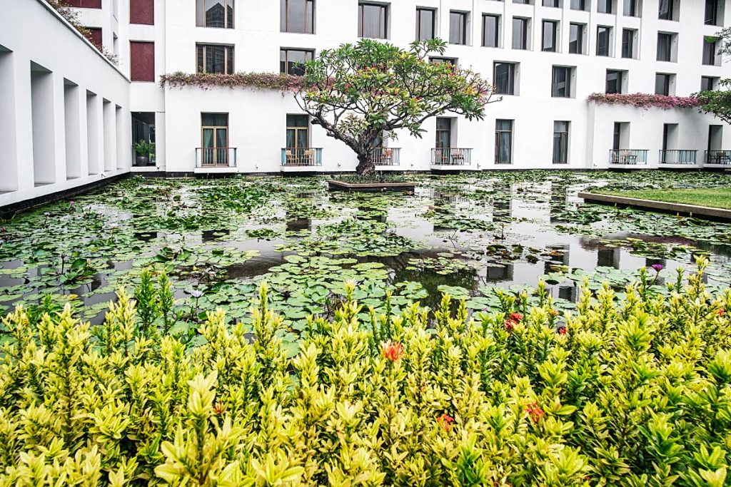 lotus garden at Sukhothai hotel