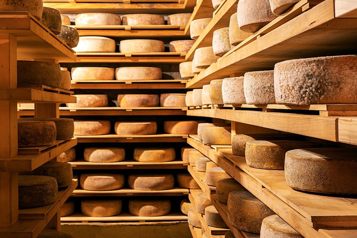 Hisa Franko Cheese Cellar