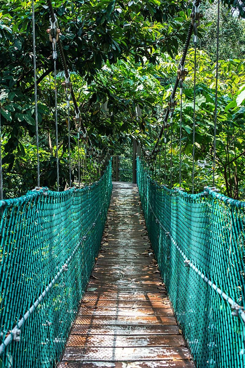 Canopy Walk Kuala Lumpur